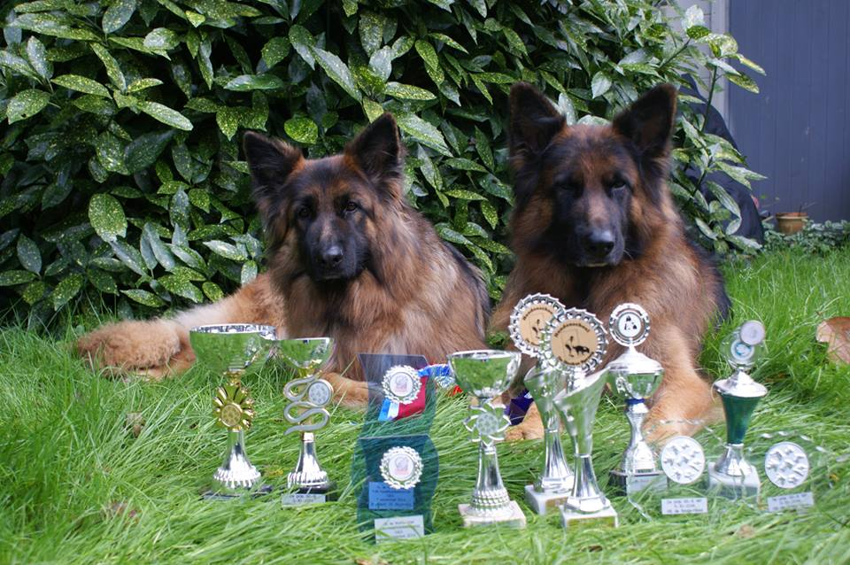 honden instructeurs Jan de Vries en Ike Westdijk